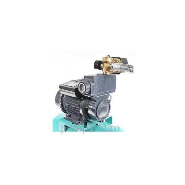 Hidrofor WZ 250 + 24L